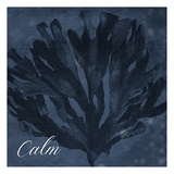 Blue Water Coral Calm Print by Jace Grey