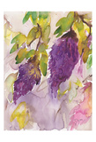 Wisteria I Poster by Beverly Dyer