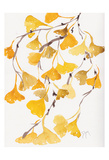 Golden Gingko A Posters by Beverly Dyer