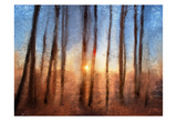 Sunset Print by Kimberly Allen