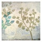 Botanical Postale 1 Prints by Kimberly Allen
