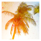 Bright Palm 1 Prints by Kimberly Allen