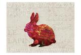 Flower Farm Rabbit Prints by Melody Hogan