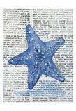 Written Starfish Posters by Pam Varacek