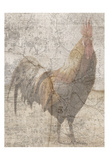 Traveling Rooster 2 Prints by Sheldon Lewis