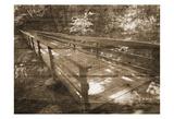 Eddys Bridge Konst