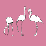 Flamingo Trio Posters by Sandra Jacobs