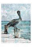 Coastal Pride Prints by Sheldon Lewis