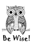 Be Wise Owl Print by Debbie Pearson