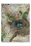 The Nest Art by Sarah Butcher