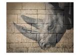 Stone Wall Rhino Kunstdrucke von Sheldon Lewis
