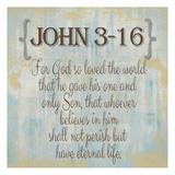 John 3-16 Prints by Taylor Greene