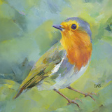Garden Robin Posters by Sarah Simpson