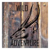 Wild Adventure Posters by Sheldon Lewis
