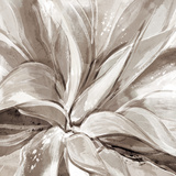 Cereus Aloe - Fawn Prints by Tania Bello