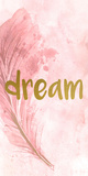 Dream Feathered Art by Kimberly Allen