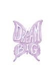 Dream Big Butterfly Prints by Pam Varacek