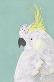 Tropical Birds - Cockatoo Poster par Joelle Wehkamp