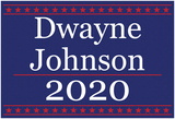 Johnson 2020 Posters