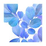 Xray Leaves I Prints by Vision Studio