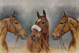 The Three Winter Kings Giclee Print by Sarah Aspinall