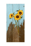 Sunflowers on Wood I Poster by Sandra Iafrate