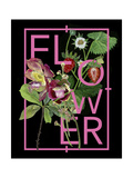 Floral Inspiration I Premium Giclee Print by Melissa Wang