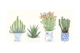 Four Succulents I Prints by Melissa Wang