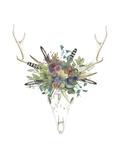Deer Skull & Flowers II Prints by Naomi McCavitt