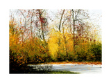 Fall Giclee Print by Miguel Dominguez