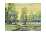 Early Evening Reflection Giclee Print by Ben Gordon