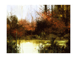 Forest Sunset Giclee Print by Miguel Dominguez