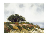 Spring by the Bay Giclee Print by Miguel Dominguez