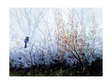 Spring Refuge Giclee Print by Miguel Dominguez