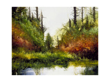 Pine Canyon Giclee Print by Miguel Dominguez