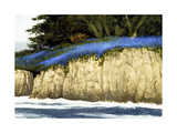Pacific Blue Giclee Print by Miguel Dominguez