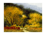 Fall Yellow Giclee Print by Miguel Dominguez