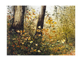 Fall Leaves Giclee Print by Miguel Dominguez
