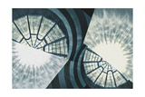 Organic Architecture 11 Giclee Print by David Jordan Williams