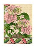 Hydrangea on Love Letters Prints by  Piddix