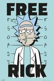 Rick & Morty - Free Rick Affiche