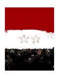 Syrian Flag Prints by Derek Bacon