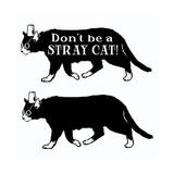Two Cats with Hats and Glasses with Sign 'Don't Be a Stray Cat' Prints by Matthew Laznicka