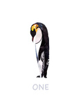 Penguin Against White Background Posters by Sarah Jackson