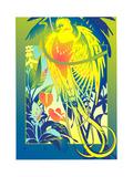Bird of Paradise Perching on Branch Prints by David Chestnutt