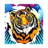 Tiger on Colored Background Prints by David Chestnutt