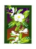 White Apple Blossoms Posters by David Chestnutt