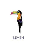 Toucan Against White Background Posters by Sarah Jackson