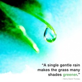 A Single Gentle Rain - Henry Thoreau Quote (Droplet) Prints by  Quote Master