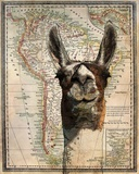 South America Llama Map Posters by  Take Me Away